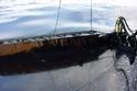 الشركة الهولندية العملاقة المتخصصة في إنقاذ السفن المنكوبة سميت سالفدج