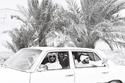 صور.. سيارات فريدة للشيخ زايد بن سلطان آل نهيان