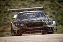 طراز السباق الجديد كونتيننتال GT3 بايكس بيك