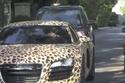جاستن بيبر قرر أن يتم طلاء السيارة على شكل جلد النمر