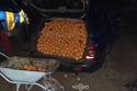 شاهد ما الذي عثرت عليه الشرطة الإسبانية بداخل سيارتين مشبوهتين! 1