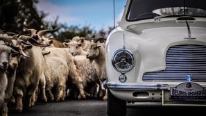 شركة السيارات المفضلة لجيمس بوند تعاني من الخسارة