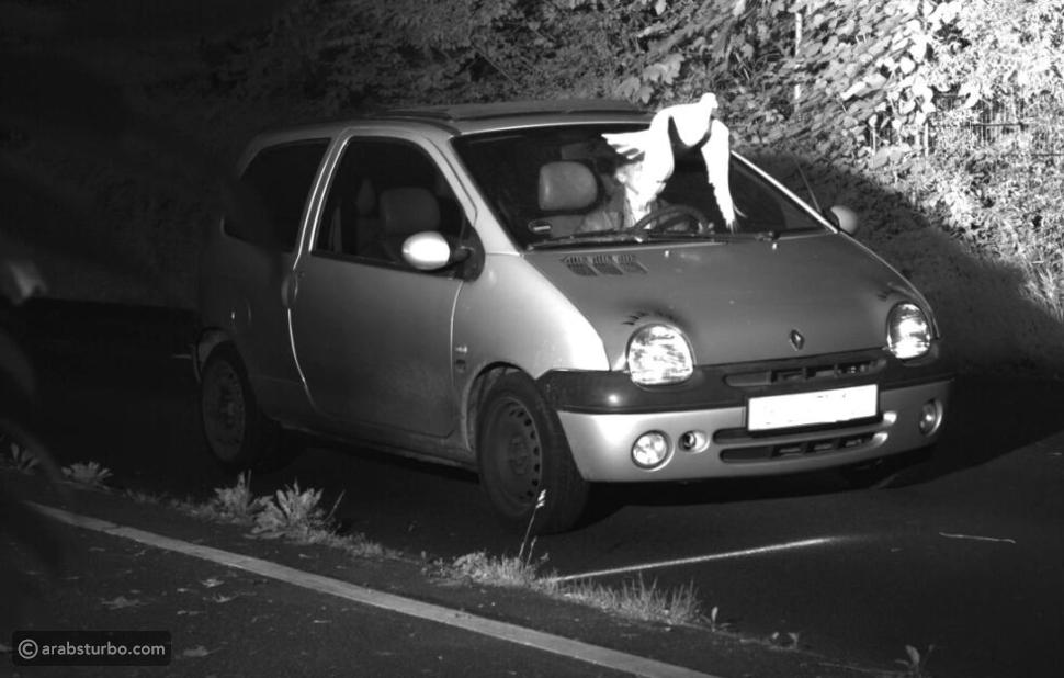 صورة.. حمامة تنقذ سائق من مخالفة سرعة!