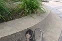 بالصور: رسومات ثلاثية الأبعاد بالطبشور على جوانب الشوارع