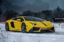 صور تبرز جمال هذه الافنتادور الصفراء مع الثلوج